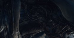 Alien: Isolation ต้องสู้! ต้องรอด! กับเอเลี่ยนภาคใหม่บน PS4และXbox One