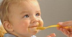 เมนูอาหารสำหรับเด็กเล็ก เด็กอ่อน วัยเริ่มต้นกินอาหาร