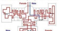 ความแตกต่างระหว่างผู้หญิงและผู้ชาย ที่ทุกคนเห็นแล้วจะต้องจี๊ด มันคือเรื่องจริง!