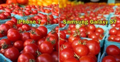 เปรียบเทียบภาพถ่ายแต่ละภาพจากกล้อง iPhone 7 กับ Samsung Galaxy S7  ใครเหนือกว่า พิสูจน์ด้วยตาคุณ