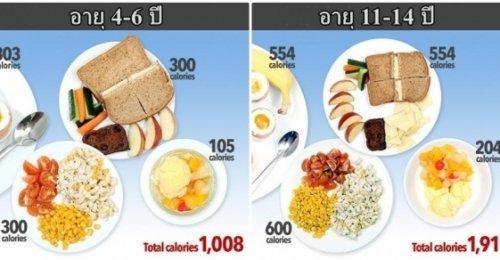นักโภชนาการทำภาพให้เห็นว่าเด็กแต่ละวัยต้องกินอาหารปริมาณเท่าใดในแต่ละวัน เพื่อไม่ให้เป็นโรคอ้วน