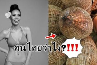 ชุดประจำชาติเวียดนาม ทำน้องน้ำตาลต้องสะเทือน!! อลังการตั้งแต่หัวจรดเท้า มาส่องด่วน คนไทยว่ายังไง??!!