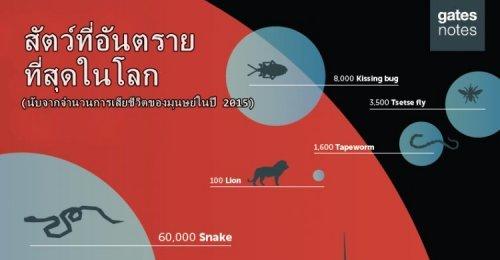 สัตว์ที่อันตรายที่สุดในโลก ไม่ใช่มนุษย์ หรืองูพิษ!! บิล เกตส์ เผยแผนที่สัตว์ที่คร่ามนุษย์ไปมากที่สุด