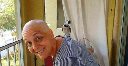นกน้อยผู้ไม่ยอมพรากจาก!! หญิงป่วยมะเร็งได้กำลังใจต่อสู้ต่อ จากเจ้านกคอยที่มาเยี่ยมเธอทุกวัน!!